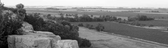 Luverne Farmland